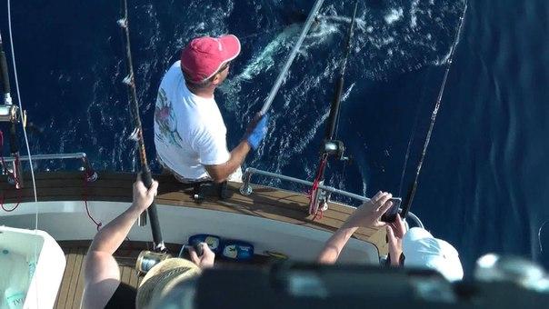 Fishing trip in Malta