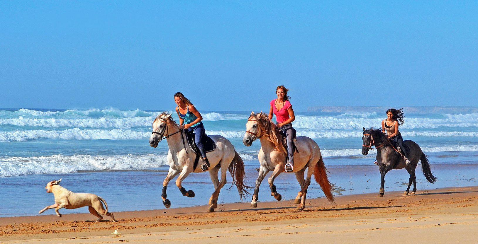 horse riding - malta